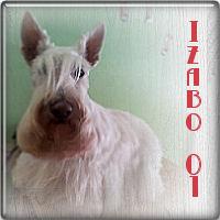 Yzabo01