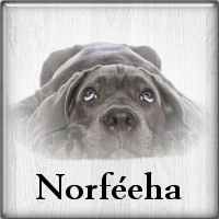 norféeha