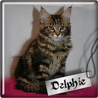 delphie1