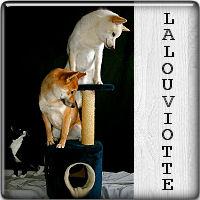 lalouviotte01