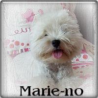 Marie-no1