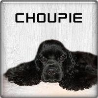 choupie