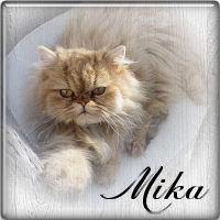 Mika48