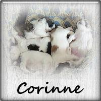 corinne23