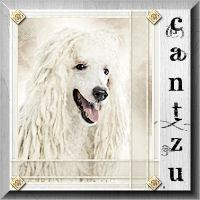 cantzu-Francoise