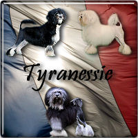 Tyranessie
