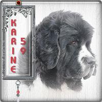 Karine 59111