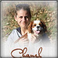 chanel14