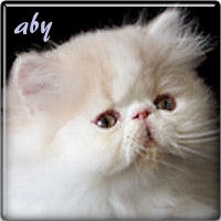 aby111