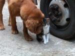 Anne et Cat11