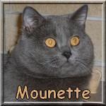 Mounette1111