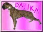 Daiika