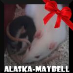 Alaska-Maybell