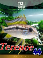 terence4411