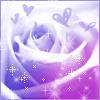 Fleur2Lotus