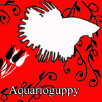 aquarioguppy1