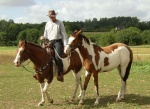 Dry River Paint Horse