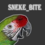 sneke_bite