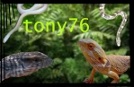 tony76