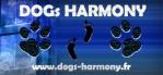 admin-dogsharmony