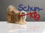 schummi