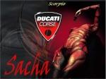 Sacha63
