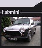 fabmini11
