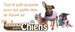 tendance petits chiens