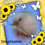 stephanie301