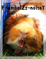 framboiZz-noiseT1