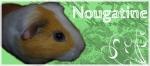 nougatine1306