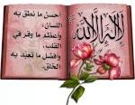 محمد الديب المرسى