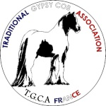 L'équipe TGCA France