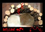 Rat_fale