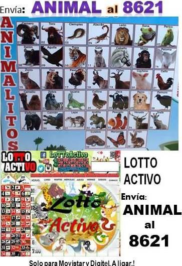 DATOS GRATIS LOTERIA, RESPONDE 084 DIRECTO CHANCE. HOY TRIPLE FIJO. DATOS GRATIS LOTTO ACTIVO, GRANJITA, GRANJA MILLONARIA Y REGALOS CON 3 ANIMALES SUPERFIJOS AYER, RESPONDE TORO, CERDO, BURRO, HOY POR MAS. DELE CLI (LUNES 14-01-2019) GRANJA2