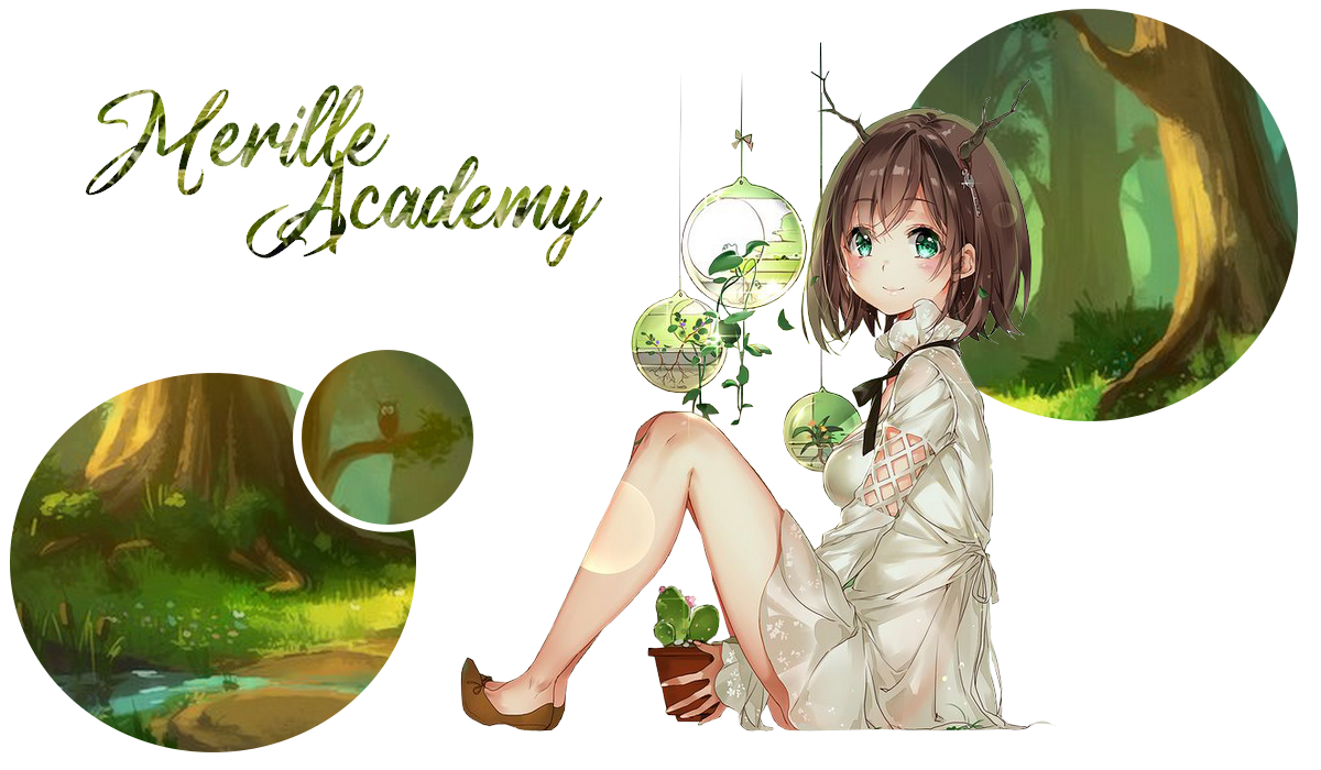 Merille Academy
