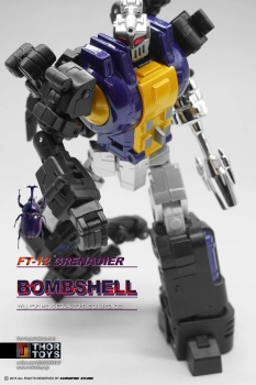 [Fanstoys] Produit Tiers - Jouet FT-12 Grenadier / FT-13 Mercenary / FT-14 Forager - aka Insecticons - Page 2 XJ5w8Con