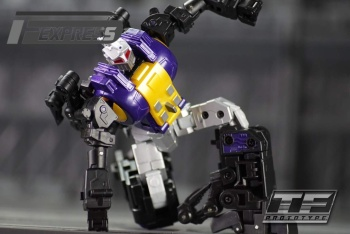 [Fanstoys] Produit Tiers - Jouet FT-12 Grenadier / FT-13 Mercenary / FT-14 Forager - aka Insecticons - Page 2 ZgqVRPFF