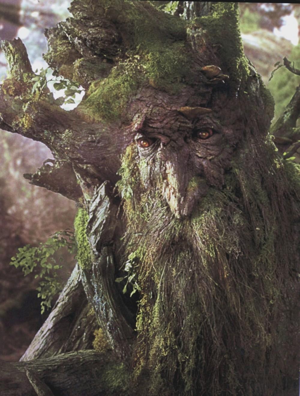 [Jeu] Association d'images - Page 19 Treebeard-the-ent-e1269783419659