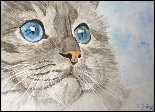 Dessins et tableaux animaliers IMG_1432-blog