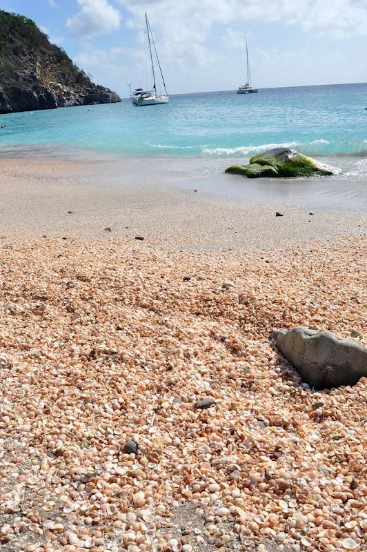 4 شواطئ صدفية مذهلة حول العالم St-bart-shell-beach-2%5B2%5D