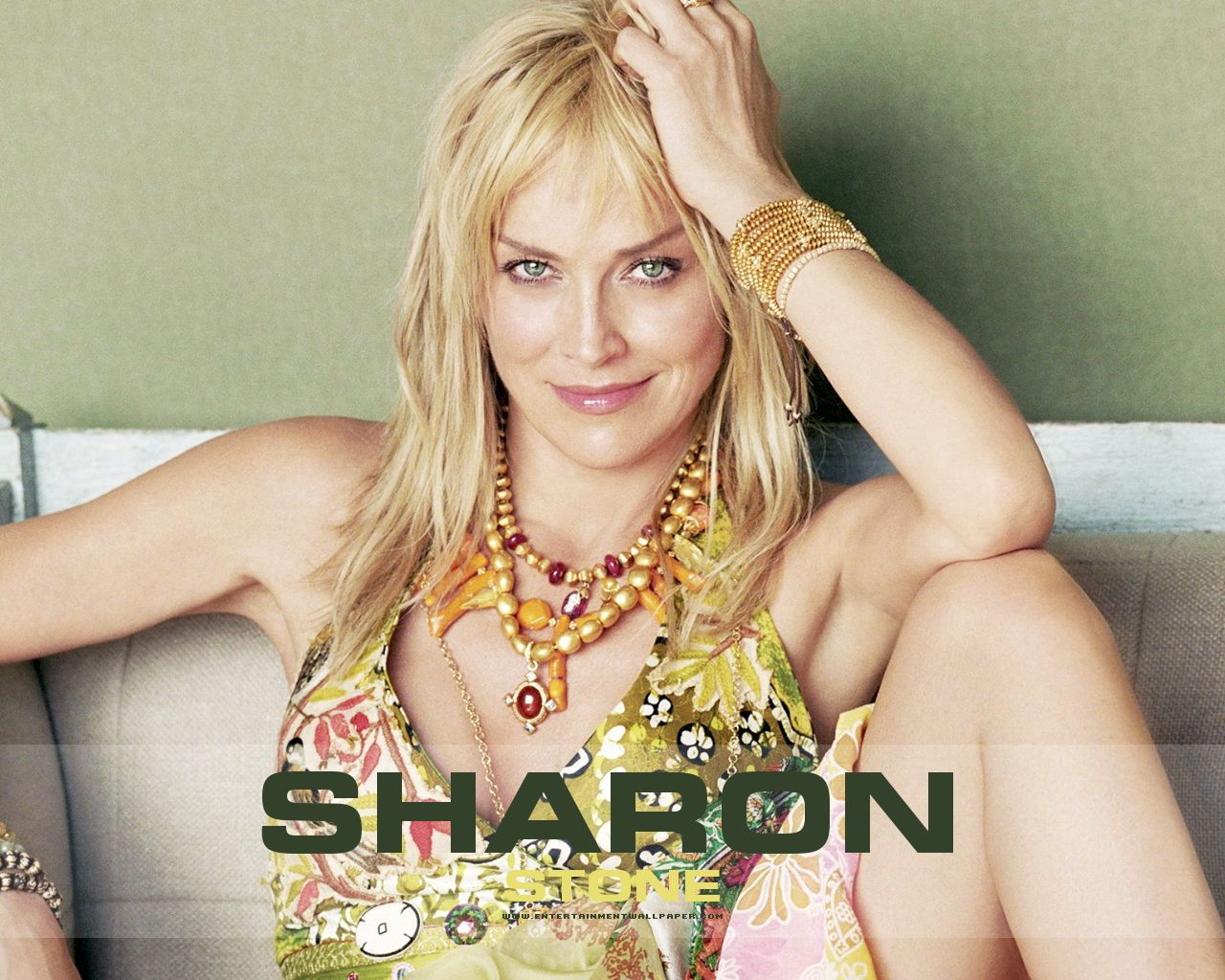 Sharon Stone Sharon-stone-sexy