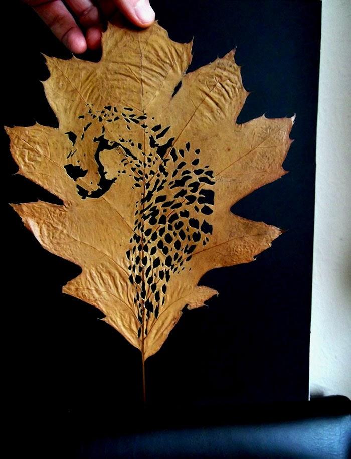 Культура и Искусство Leaf-cutting-omid-asadi-5