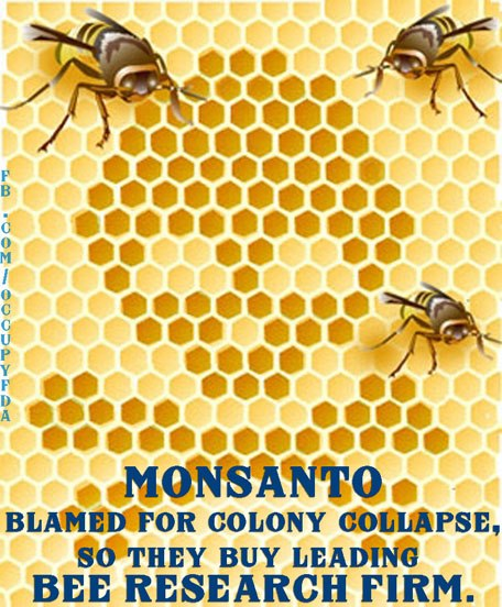 Monsanto - Monsanto au secours des abeilles ??? 72346_441659795924583_1846422927_n