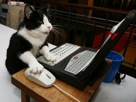 You can't just seal all Dark Souls 2 chat into a single thread Cat20typing