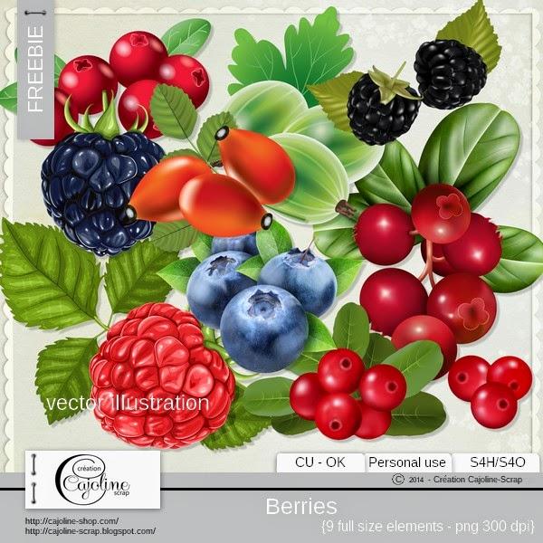 Freebie - Vector illustration berries CU Freebie_cajoline_vectorillustrations_baies_cu