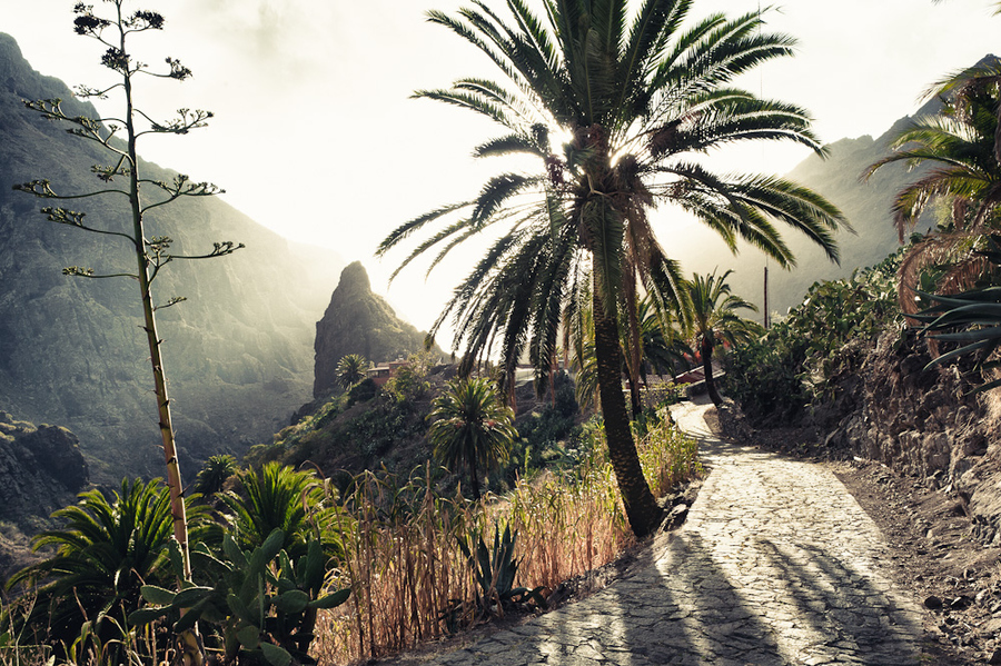 Landscapes of Tenerife - Page 6 Masca