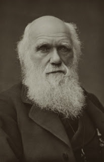 La epigenética y el resurgir del lamarckismo Darwin1881s
