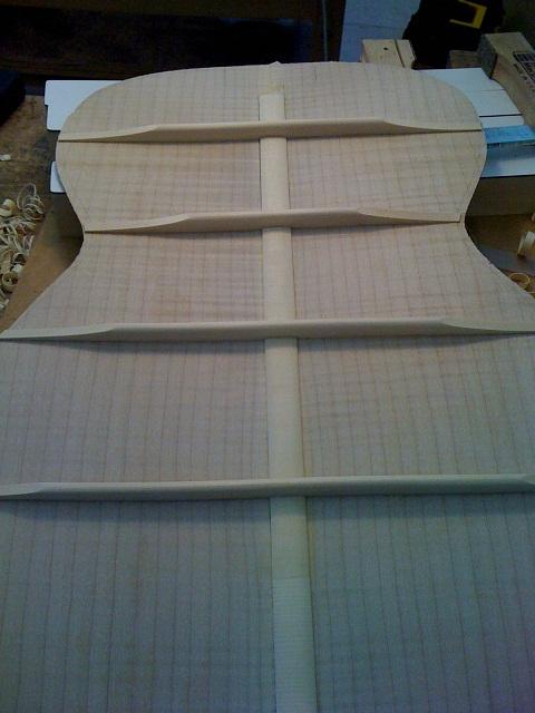 VIDÉO EN LIGNE: OM Englemann/érable ondé à grande feuille - Page 3 IMG_1257