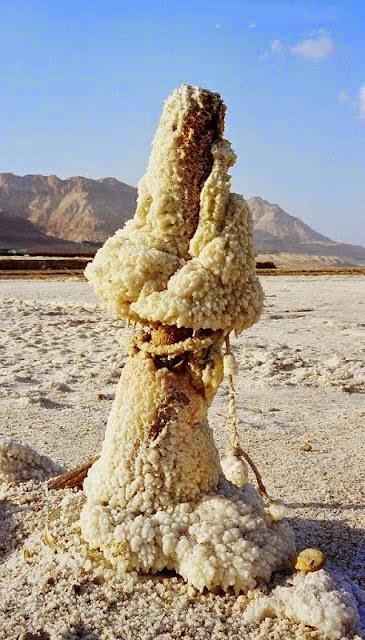 تعرف على تكوينات غريبة ومدهشة للملح في البحر الميت Dead-sea-salt-crystals-5%5B3%5D
